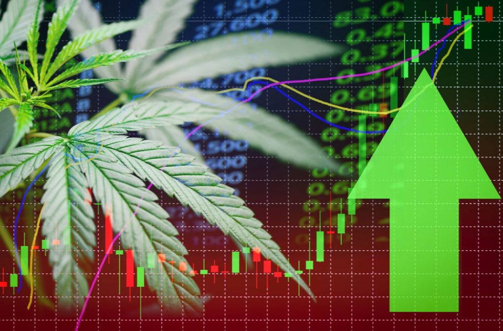 Marijuana Stocks – Investing Your Green in Green!